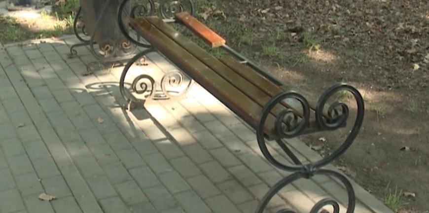 Дубовая аллея в Дашково-Песочне подверглась натиску вандалов