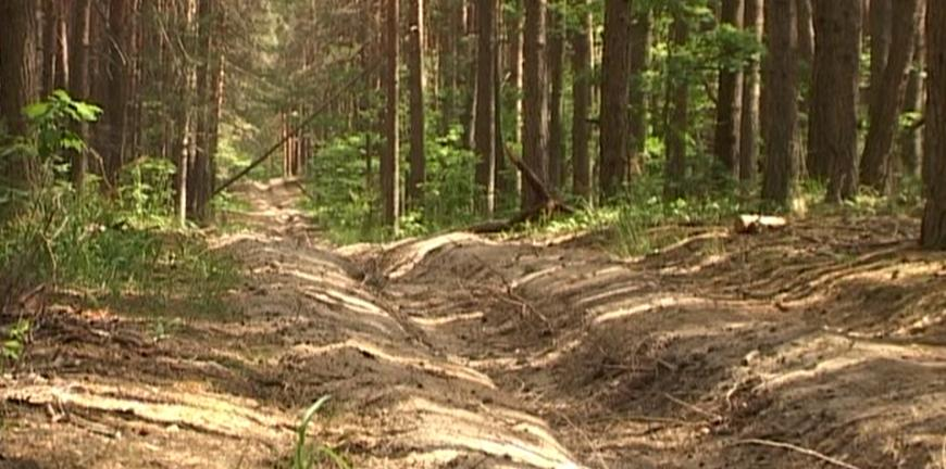 В Рязанской области отменили противопожарный режим