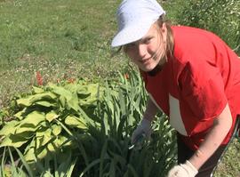 Рязанские старшеклассники смогут устроиться на работу